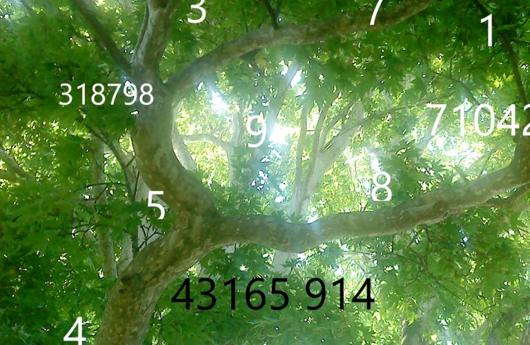 Zahlen im Bild 2